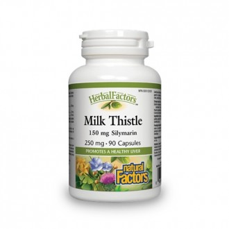 Silimarin Milk Thistle 250 mg 90 capsule