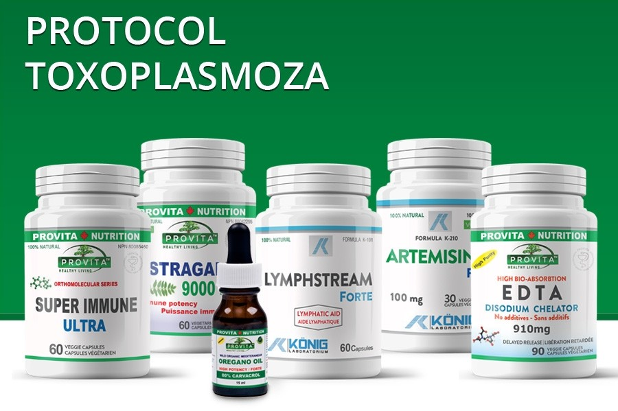 Protocol Toxoplasmoza